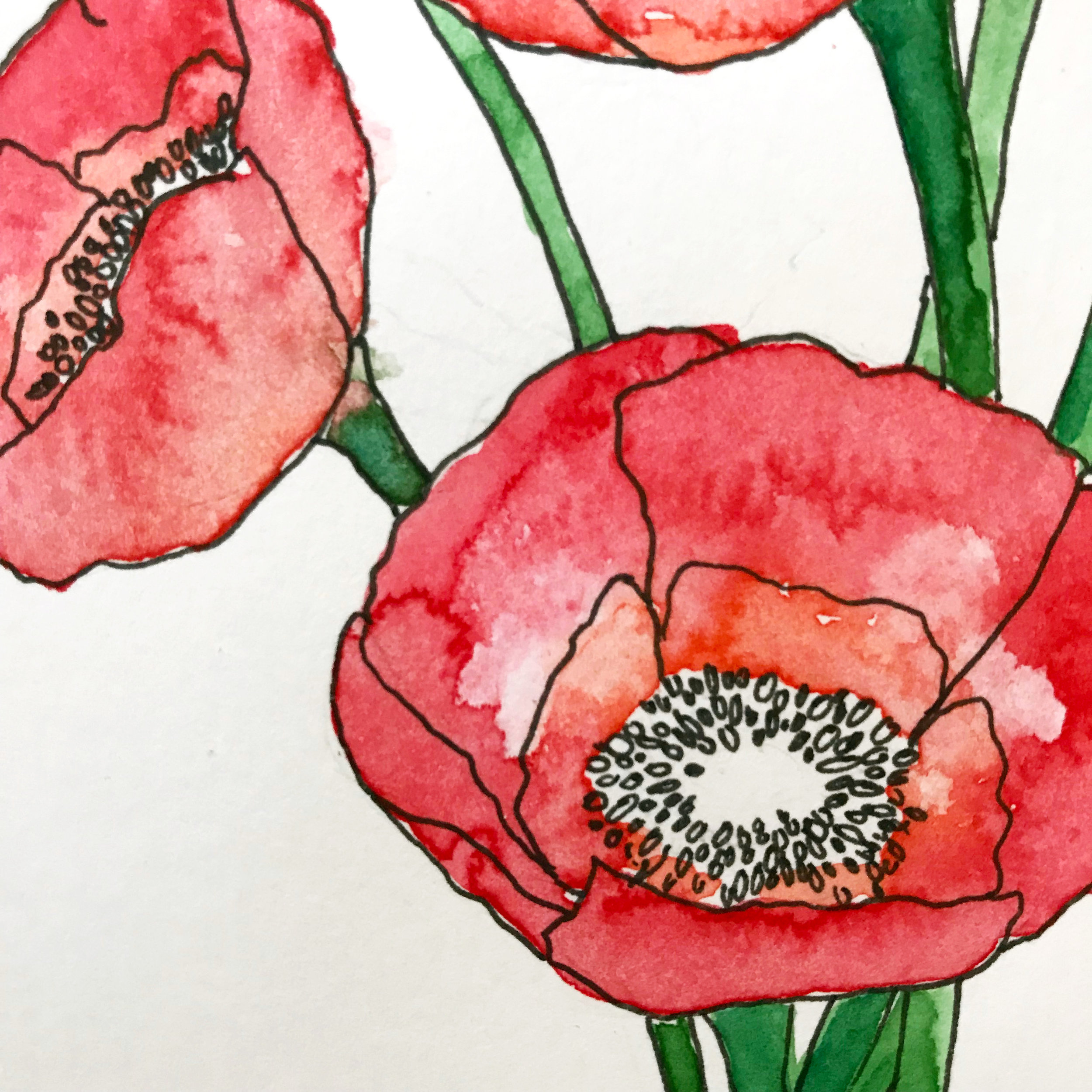 Bristol paper allows for the smoothest illustration using micron pens, but watercolors do not absorb as well using a wash of water which causes the pigment to sit on the surface of the paper.