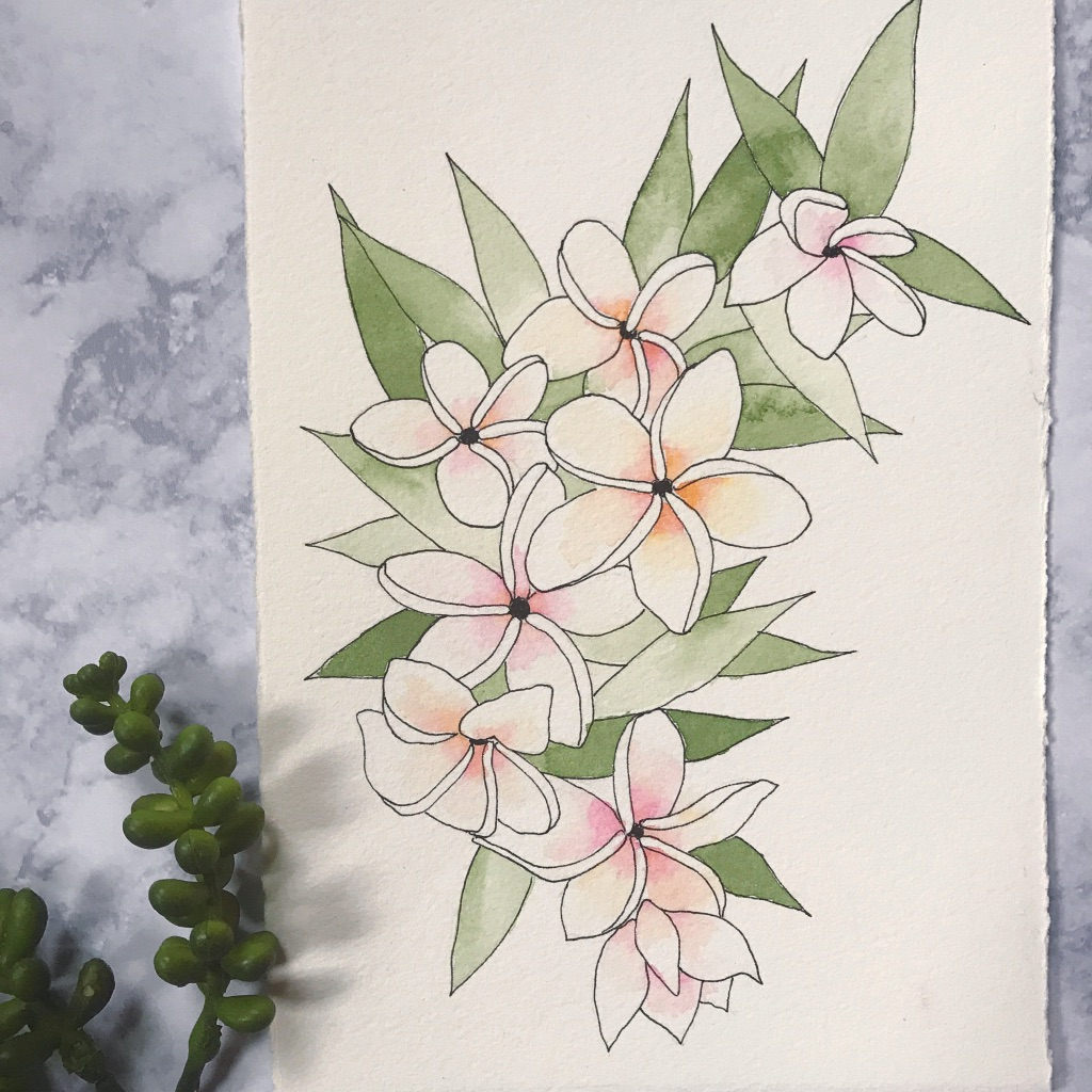 Plumeria flowers painted & drawn on Arches Cold Press paper, by danielleandco.com