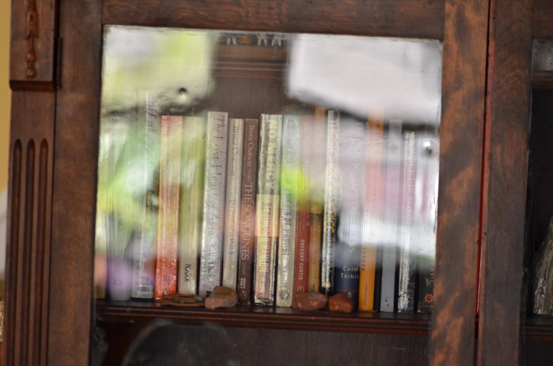 DSC_1351 reflections USA16.jpg