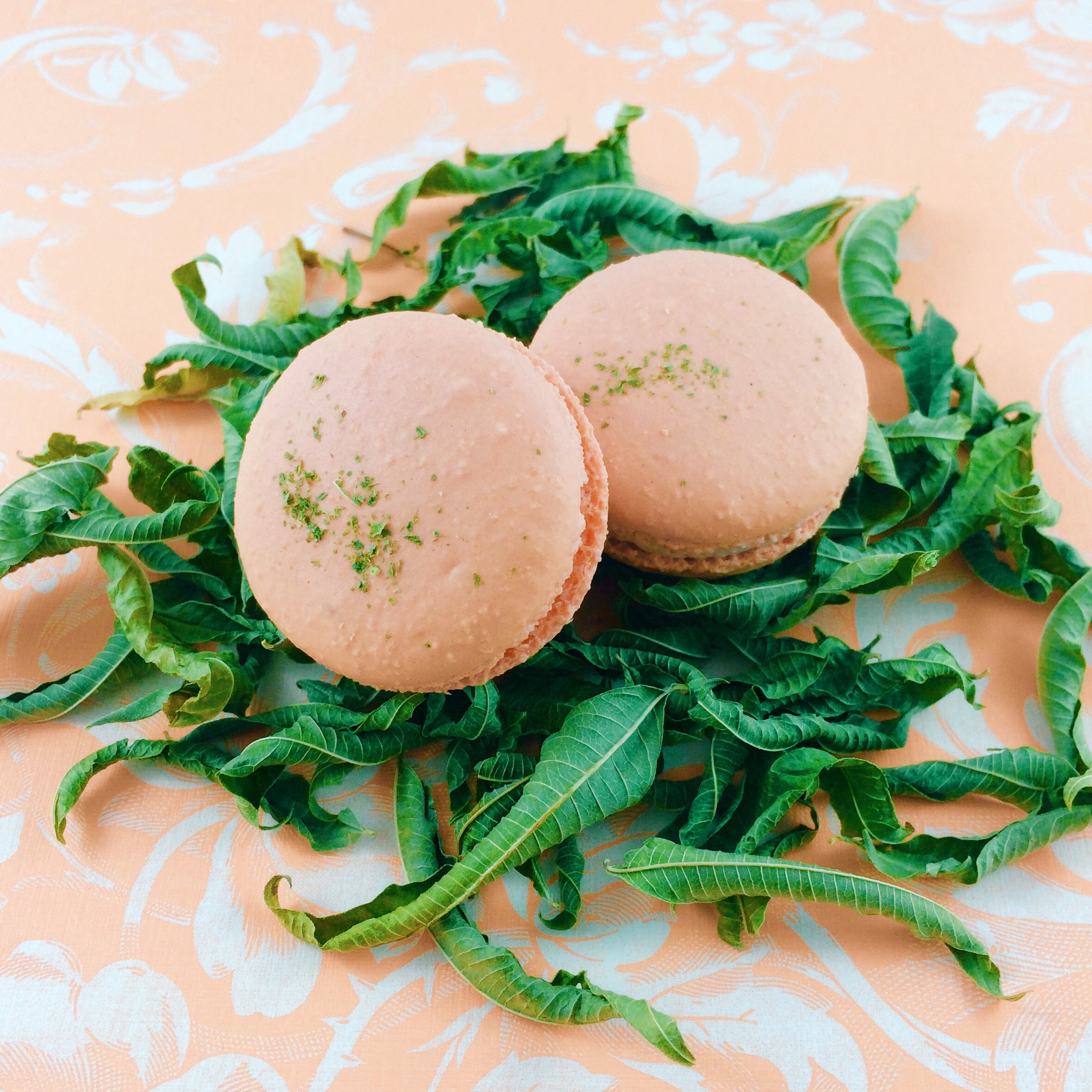 strawberry-grapefruit-verbena-macarons.jpg