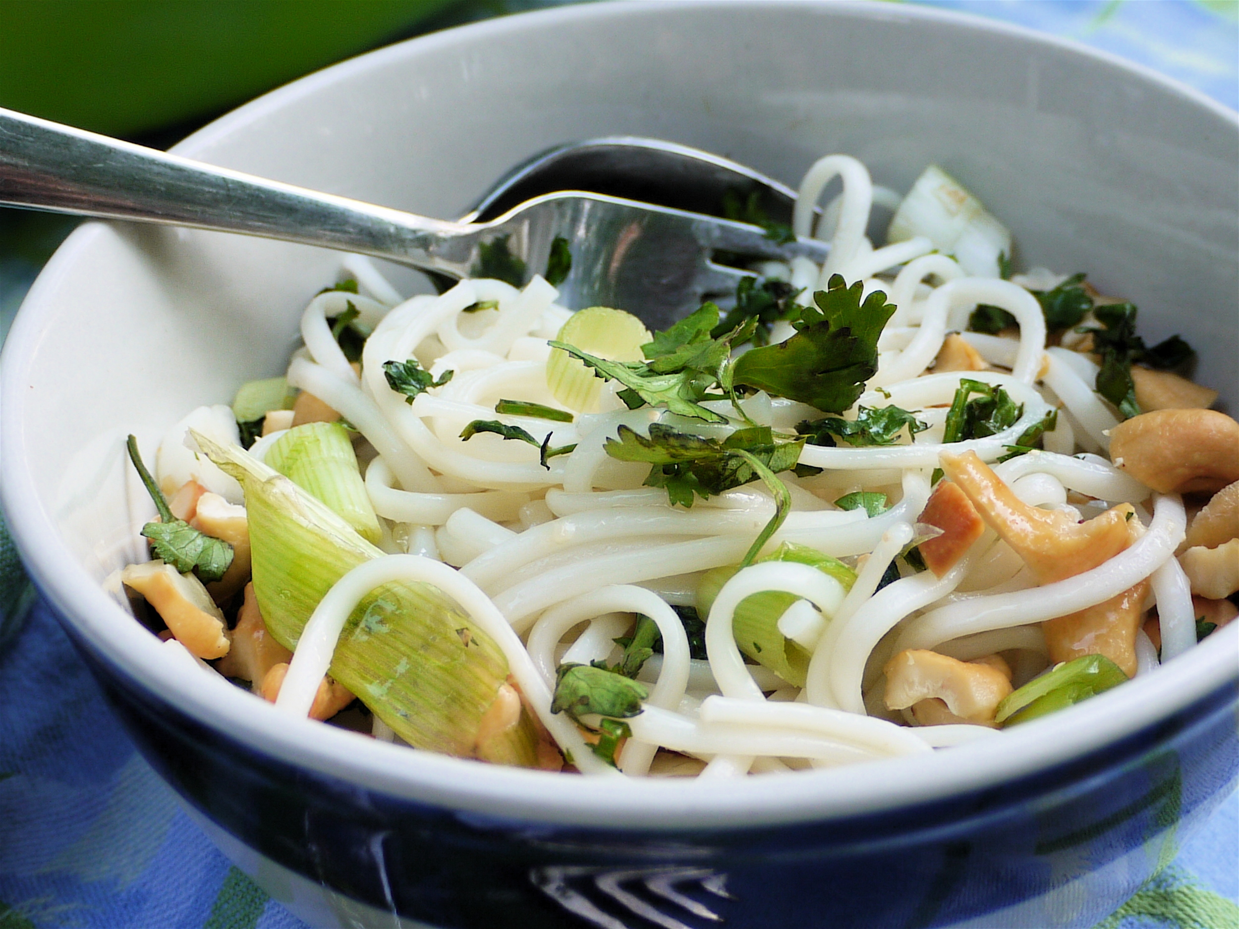 Noodles with scallions, cashews and ginger
