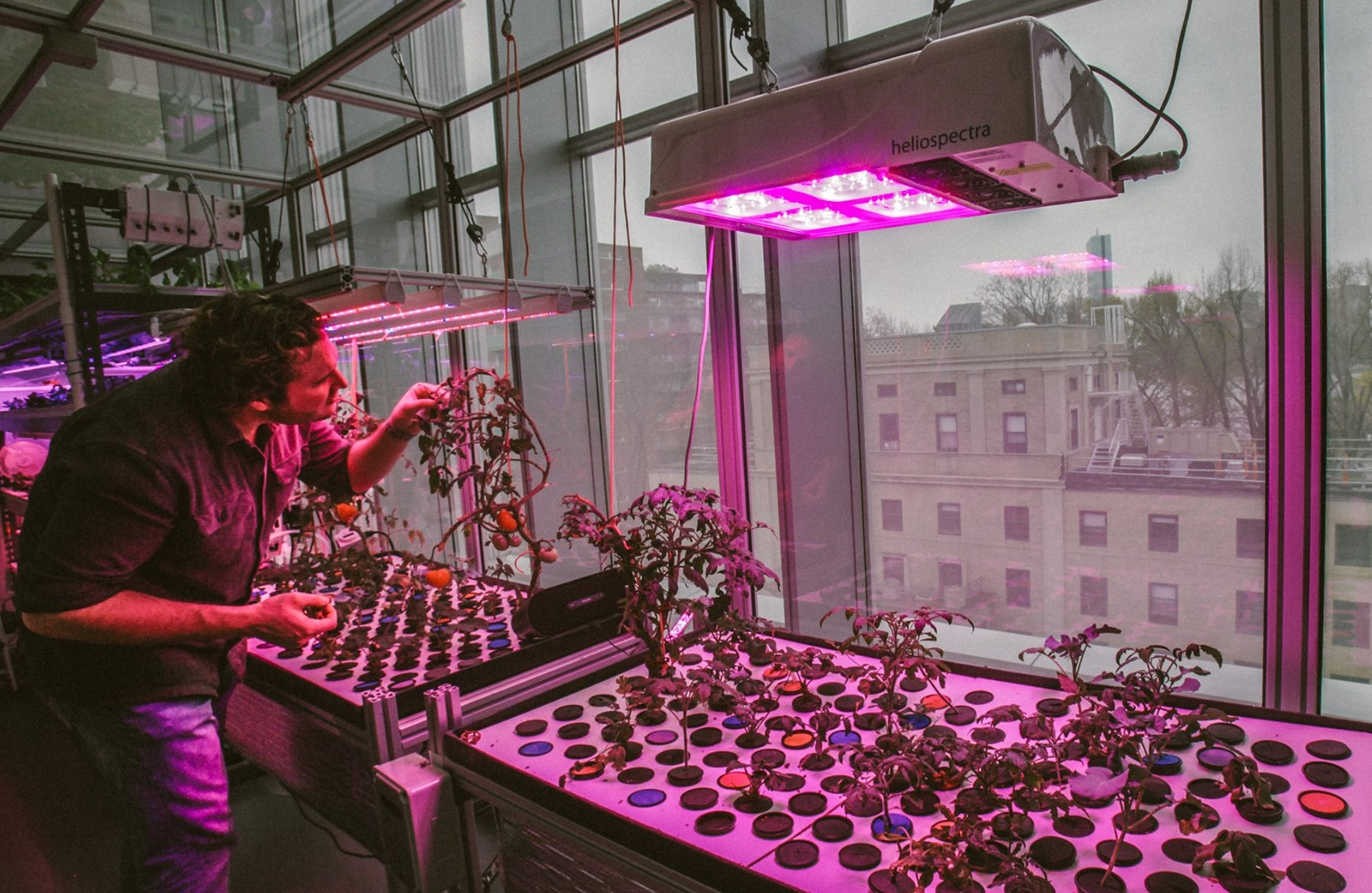MIT Media Lab  / CityFarm /  Caleb Harper