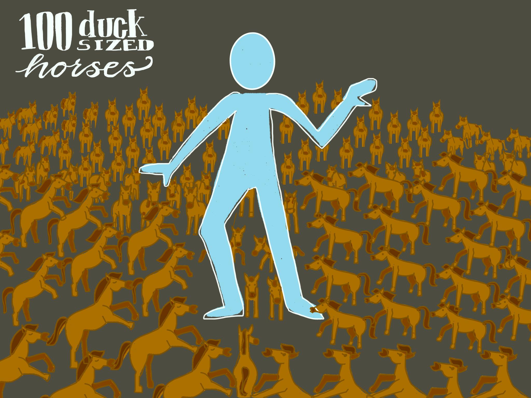 100 duck sized horses