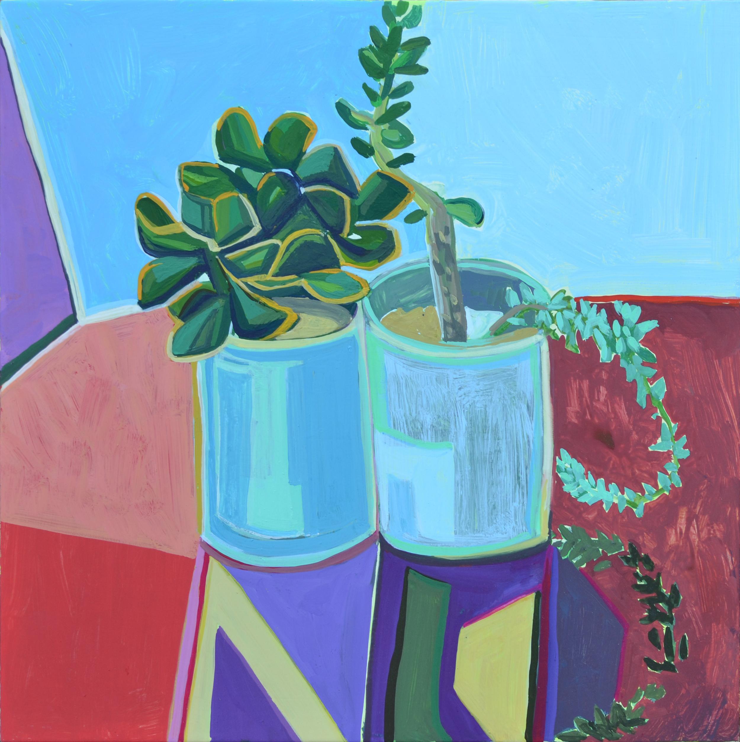 Meg's Succulents