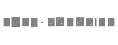 lost-paradise-logo-grey.png