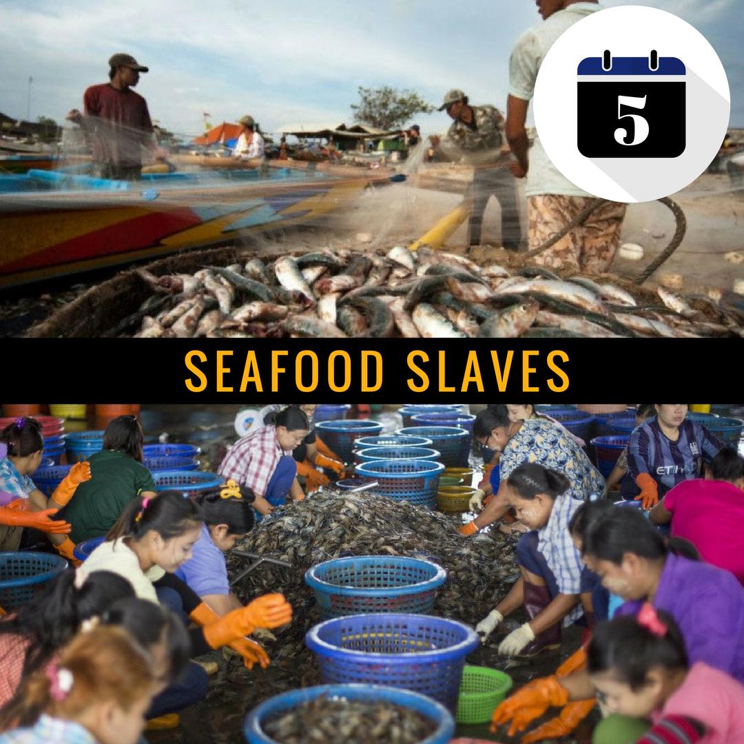Seafood Slaves