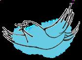 Menu Bird