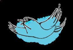 Prot�g�-stylists-bird