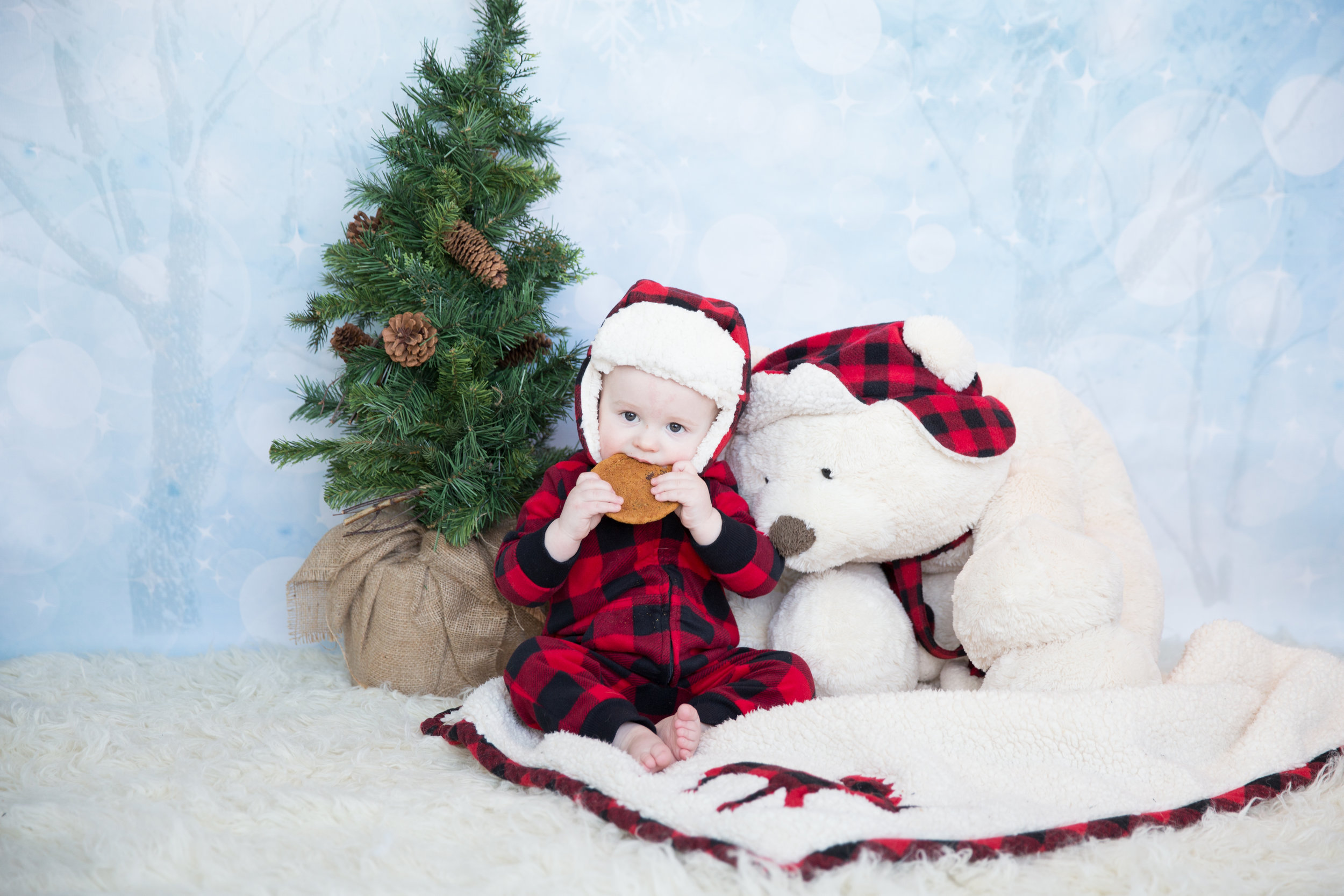Creative Christmas Photoshoot - Calgary Photographer