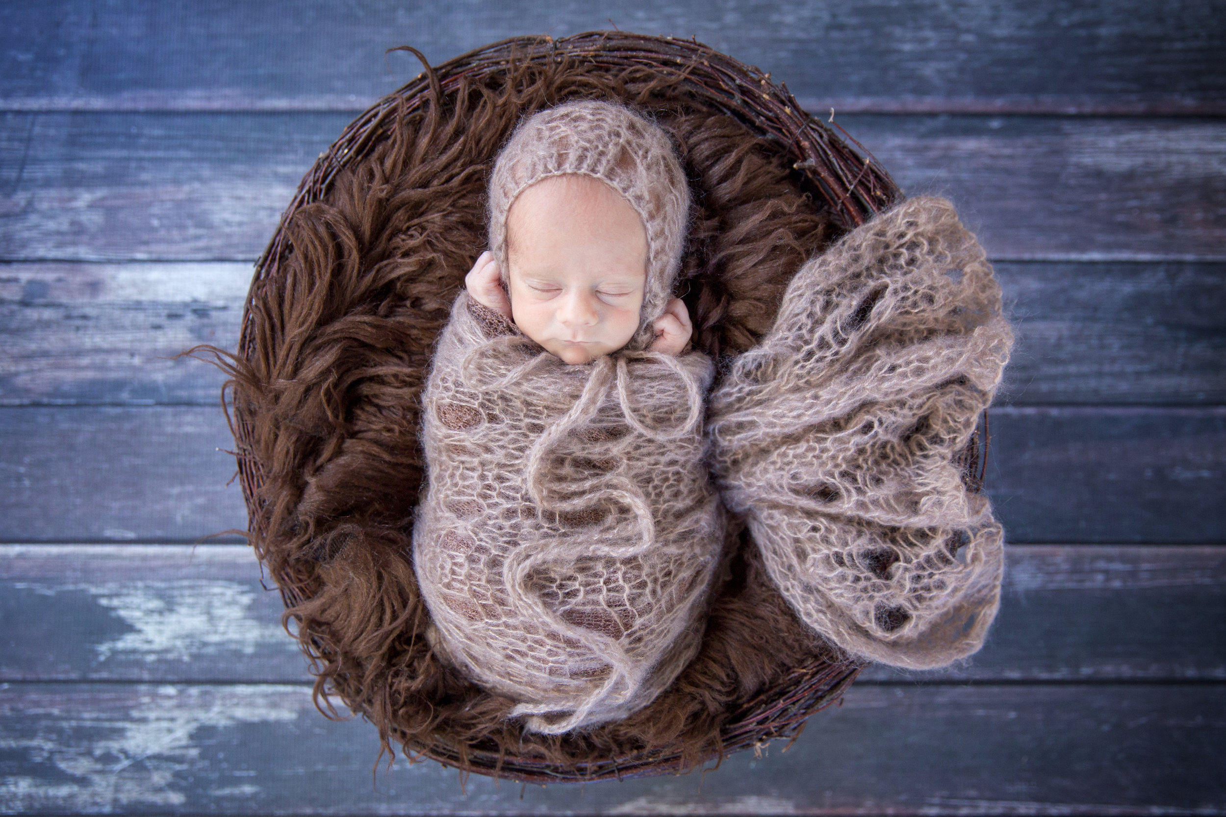 Newborn baby boy in the nest prop. Calgary and Newborn photographer.