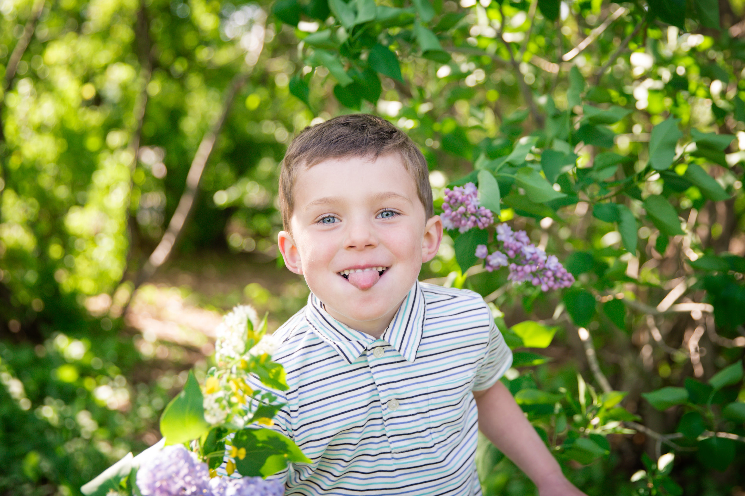 Boy with his tongue out holding bouquet of lilacs. Calgary child photographer. Milashka Photography