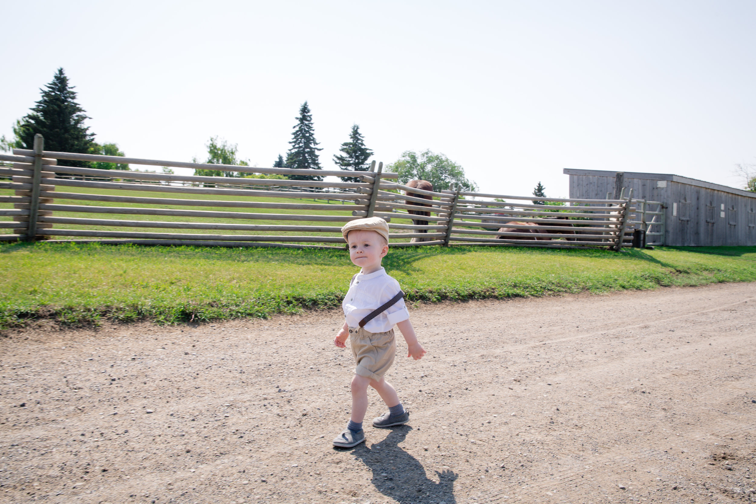 Cute little boy walking proudly at the farm. Calgary photographer. Milashka Photography