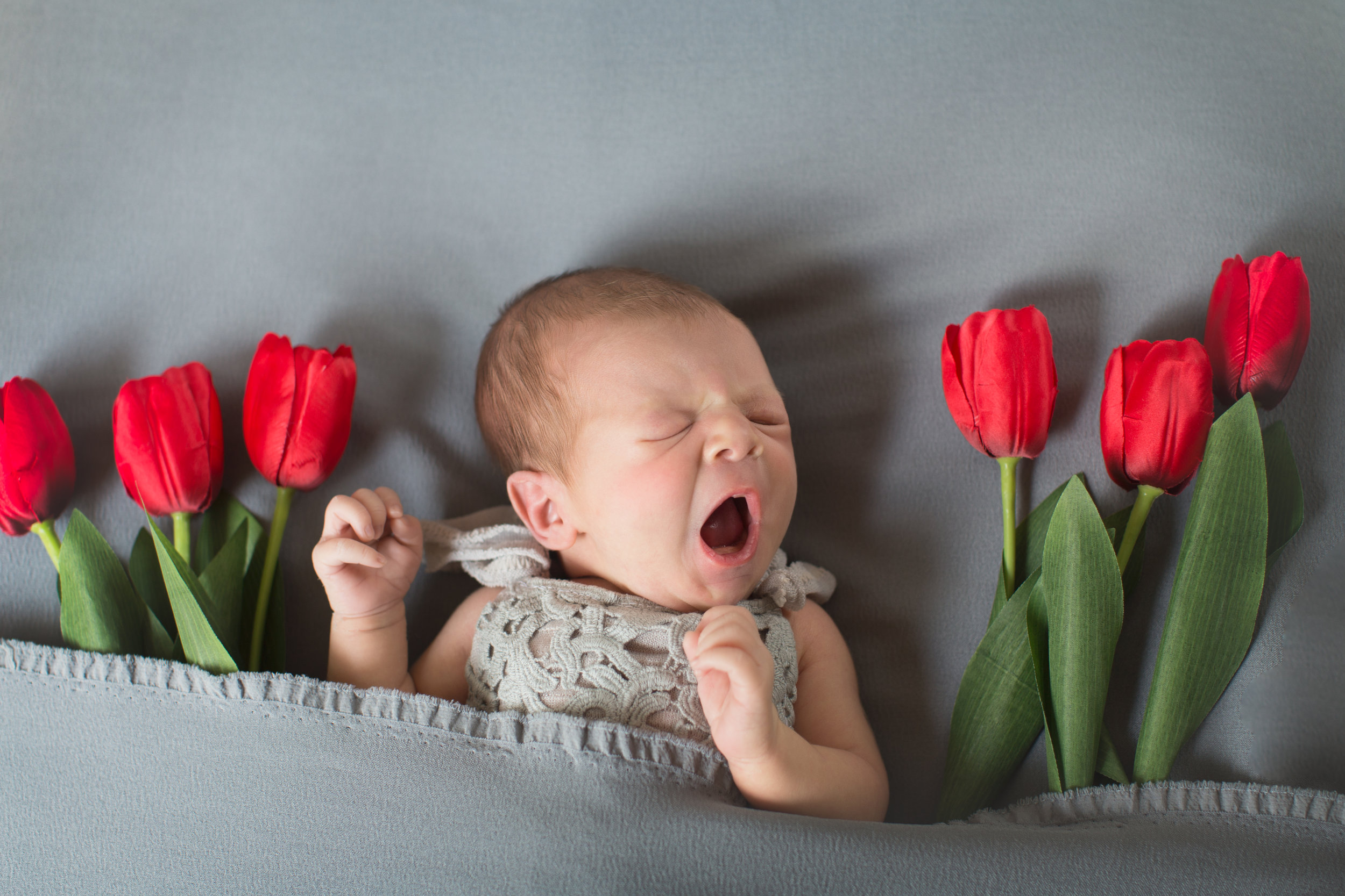 Sweet little baby girl yawning on a beanbag with tulips beside her. Calgary Newborn Photographer - Milashka Photography