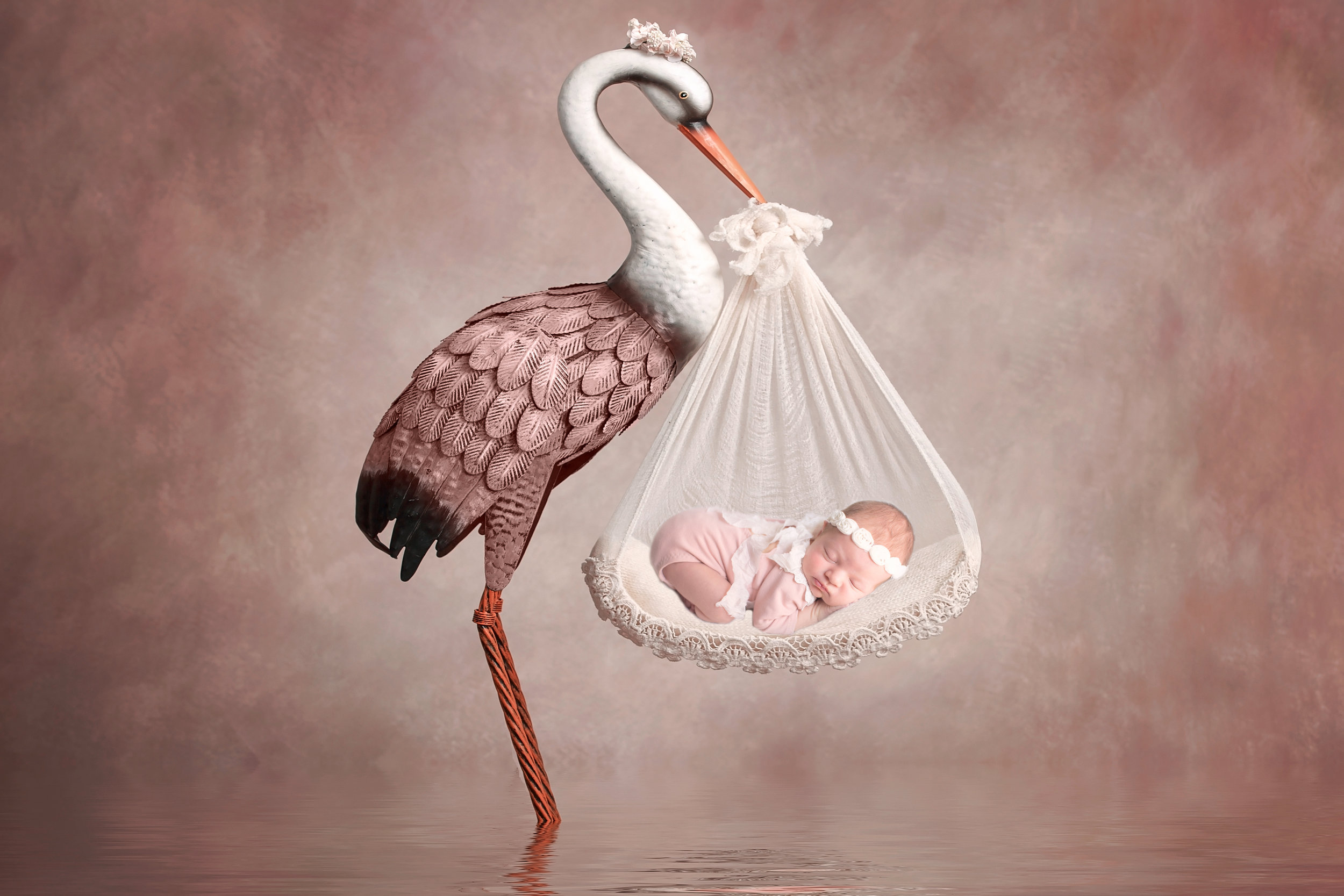 Composite image with a stork holding a newborn baby girl. Calgary Newborn photographer - Milashka Photography