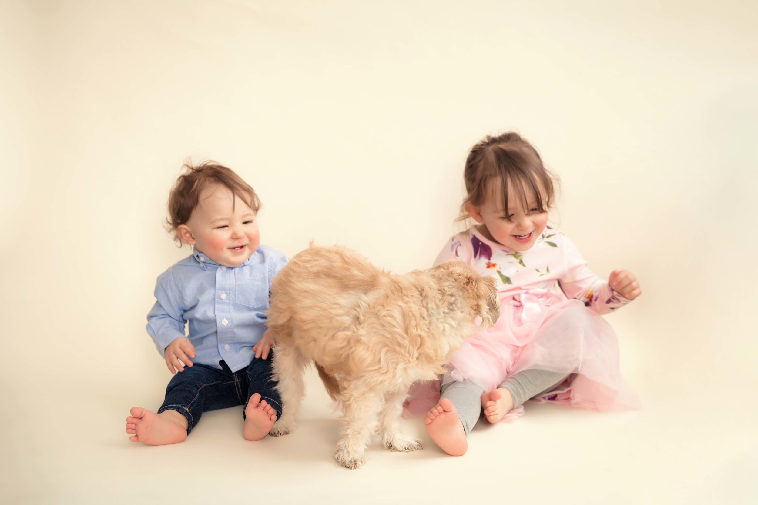 Baby boy and his 2 year old sister are playing with their dog. Calgary photographer.