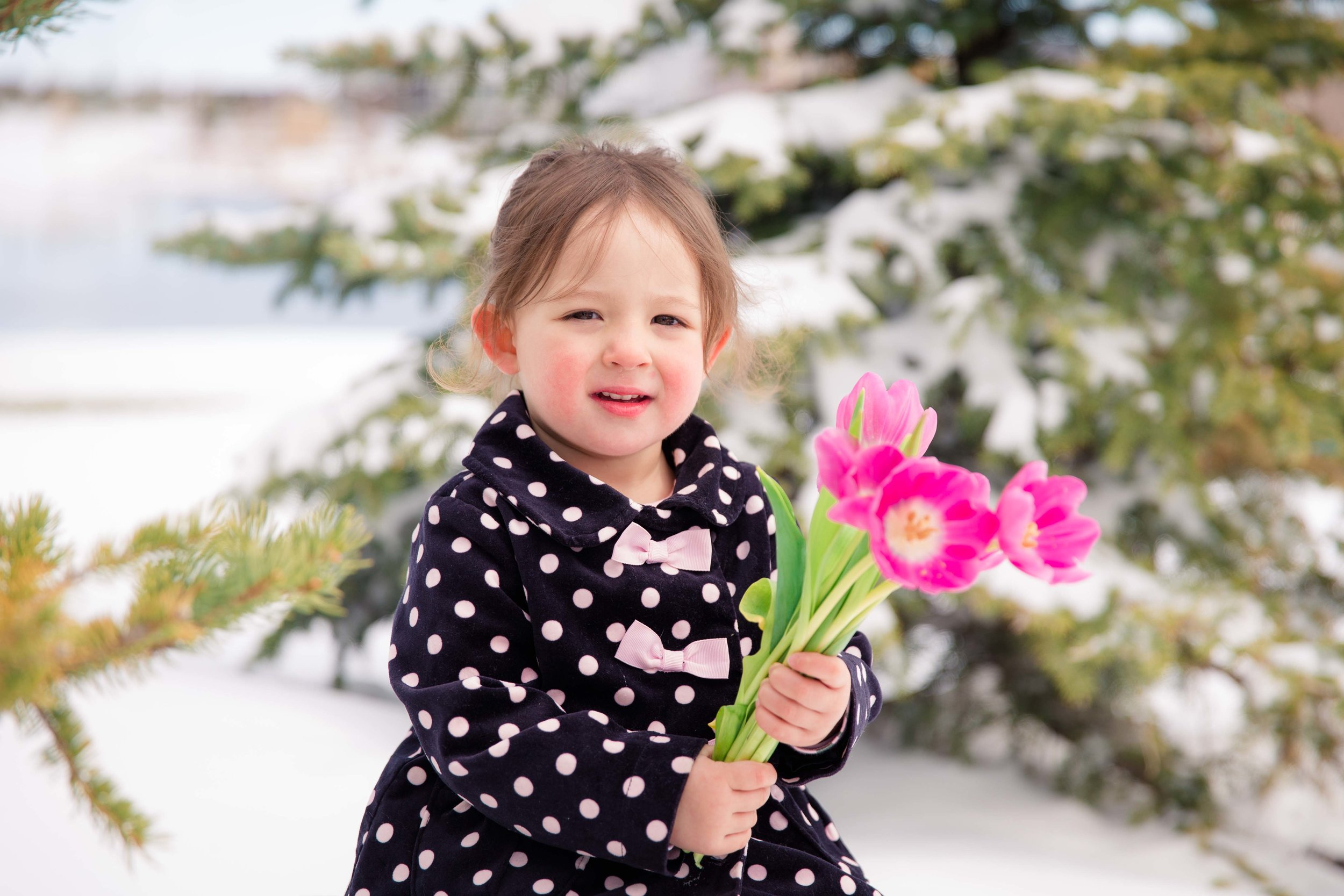 A toddler girl is holding tulips while there is snow everywhere. Calgary and Airdrie family photographer