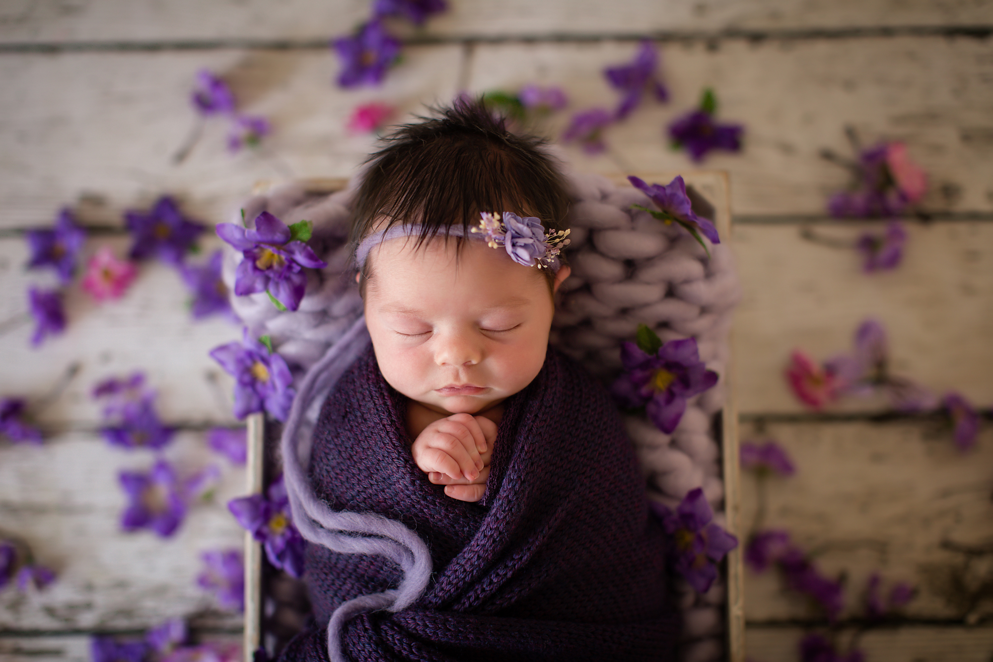 Newborn baby girl photoshoot idea. Baby girl is posed in the crate, wrapped in purple wrap and surrounded by purple flowers.
