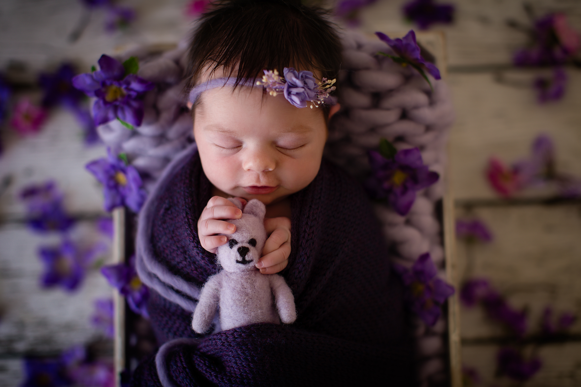Newborn baby girl photoshoot idea.  Baby girl is smiling in her sleep and is holding a little purple teddy bear. Posed in a crate with purple flowers around her.