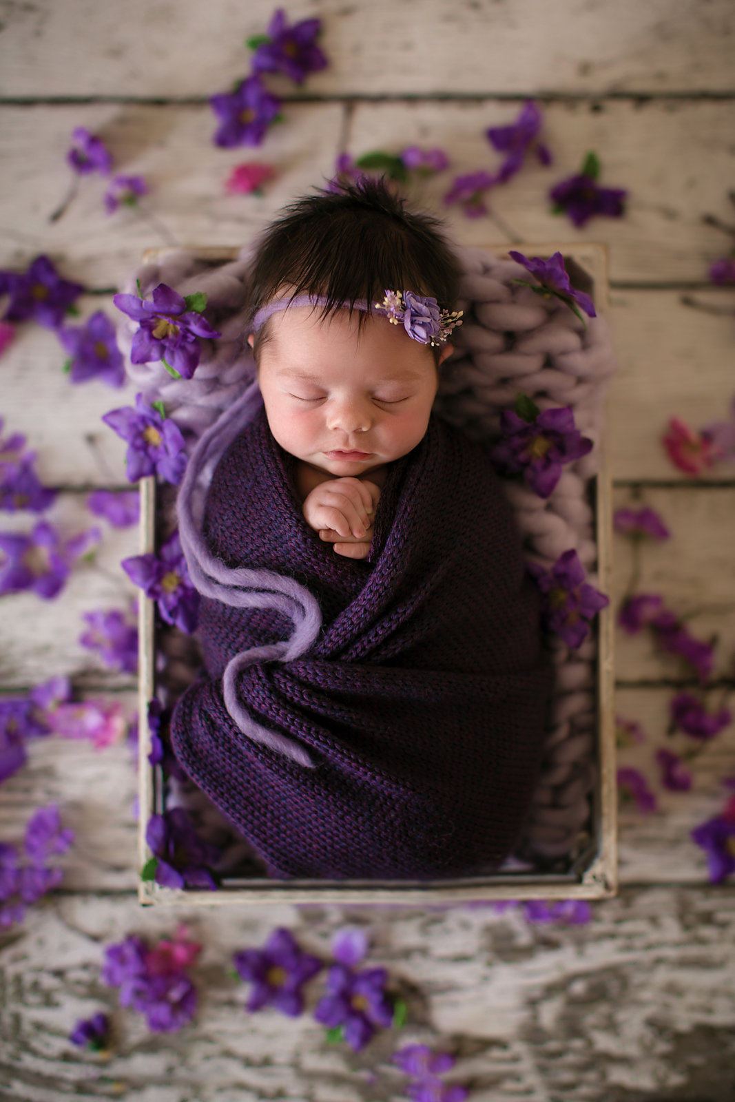 Newborn baby girl photoshoot idea. Baby girl is wrapped in a purple wrap and is surrounded by purple flowers sleeping soundly in a white crate.