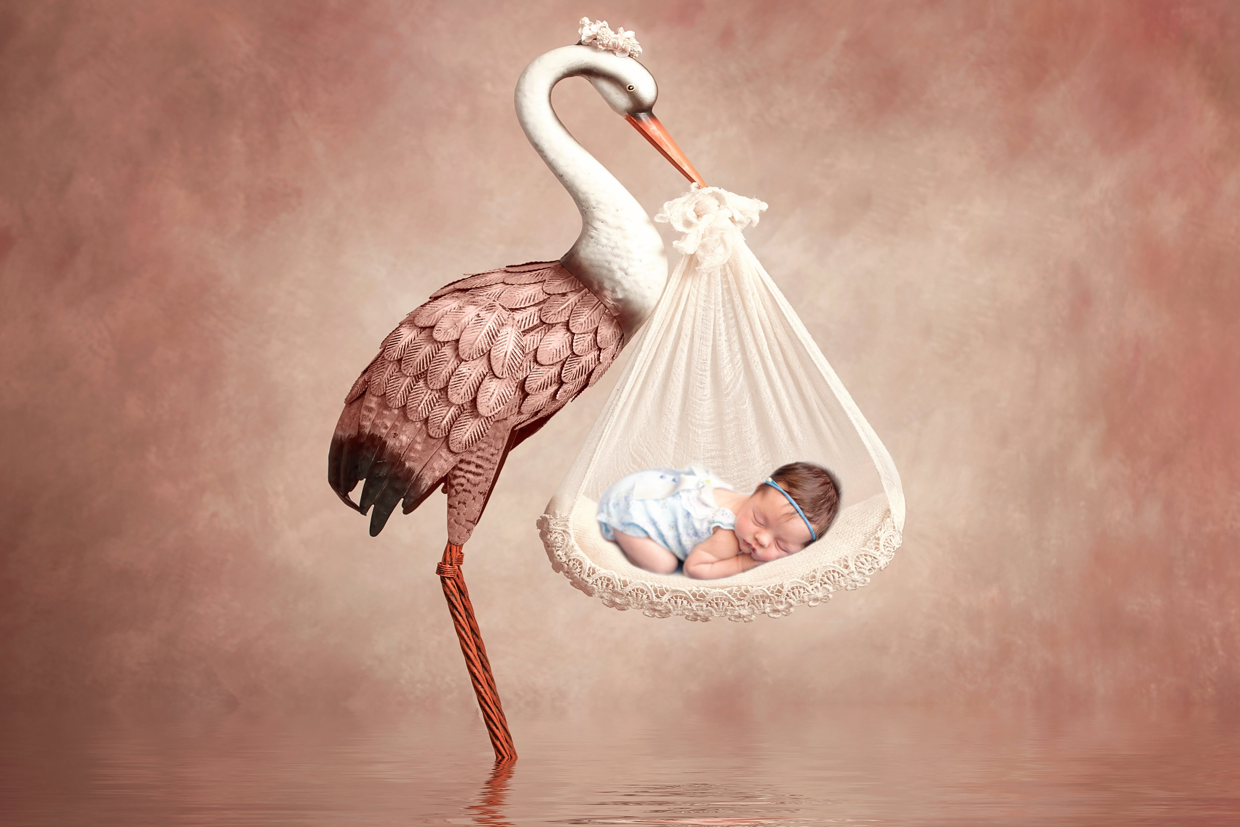Newborn baby girl photoshoot idea. Calgary and Airdrie Newborn Photographer - Milashka Photography. Composite image with a stork.