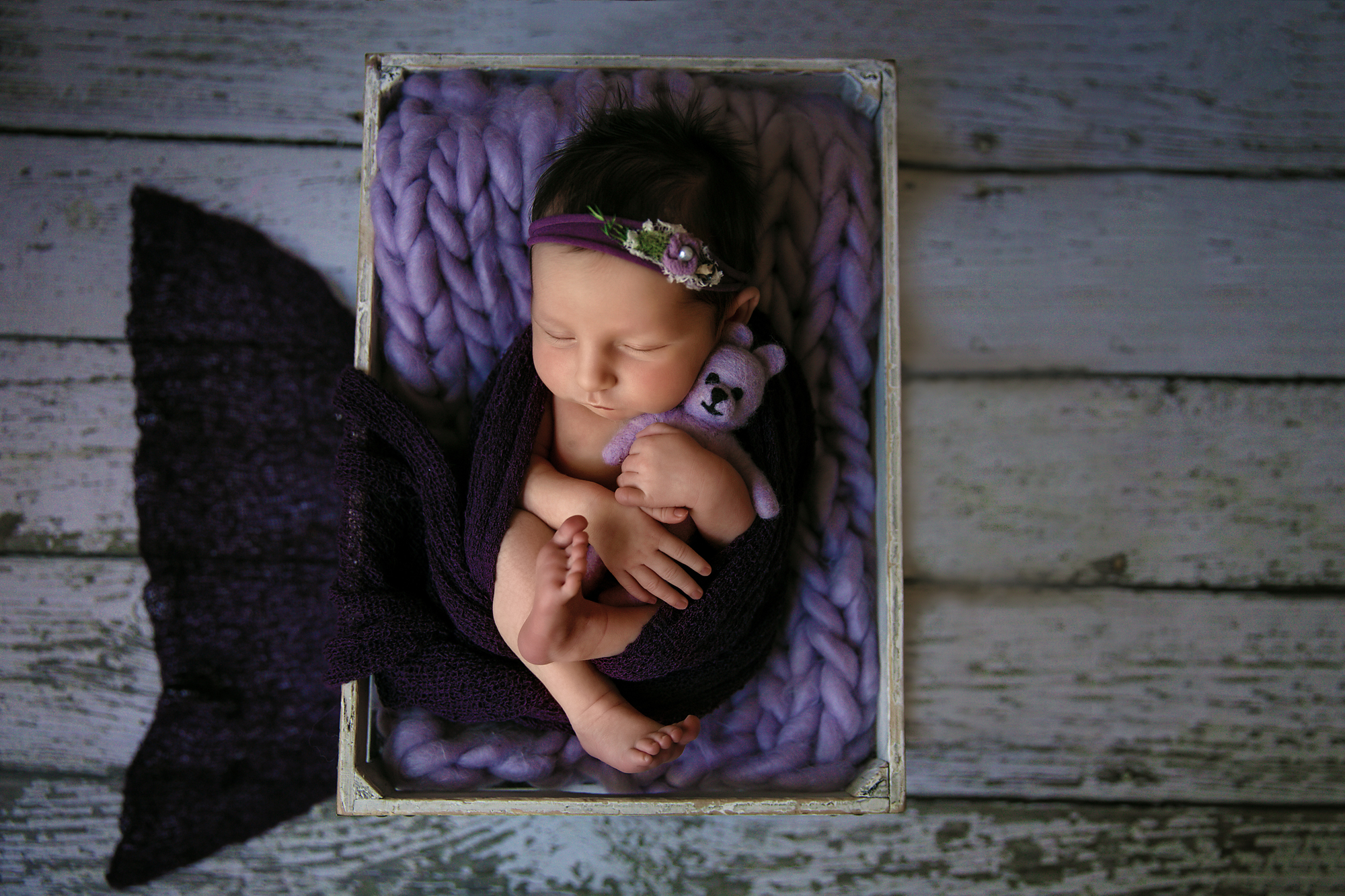 Newborn baby girl is posed in a crate and is hugging a little purple bear. Newborn Photoshoot ideas. Calgary and Airdrie newborn baby photographer - Milashka Photography