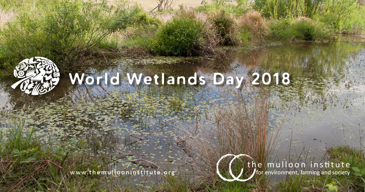 World-Wetlands-Day-2018.jpg