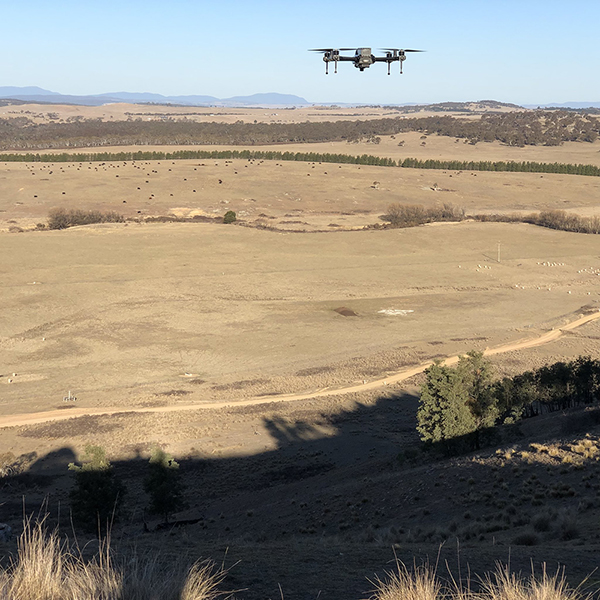 2018-08-2 - Surveying Duralla - John Troughton-600px.jpg