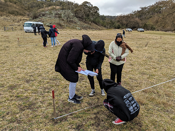 Conducting Landscape Function Analysis near Peter's Pond