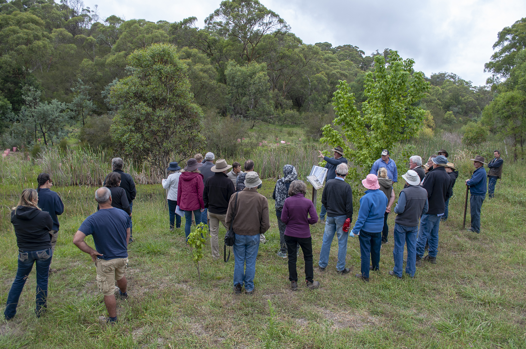 Engaging with Landcare groups