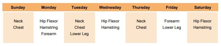 employee daily stretch schedule.jpg