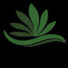 The originator in cannabis delivery.
