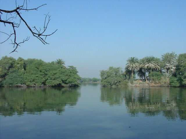 Keoladeo Ghana National Park, Bharatpur. There are birds everywhere here except in this picture