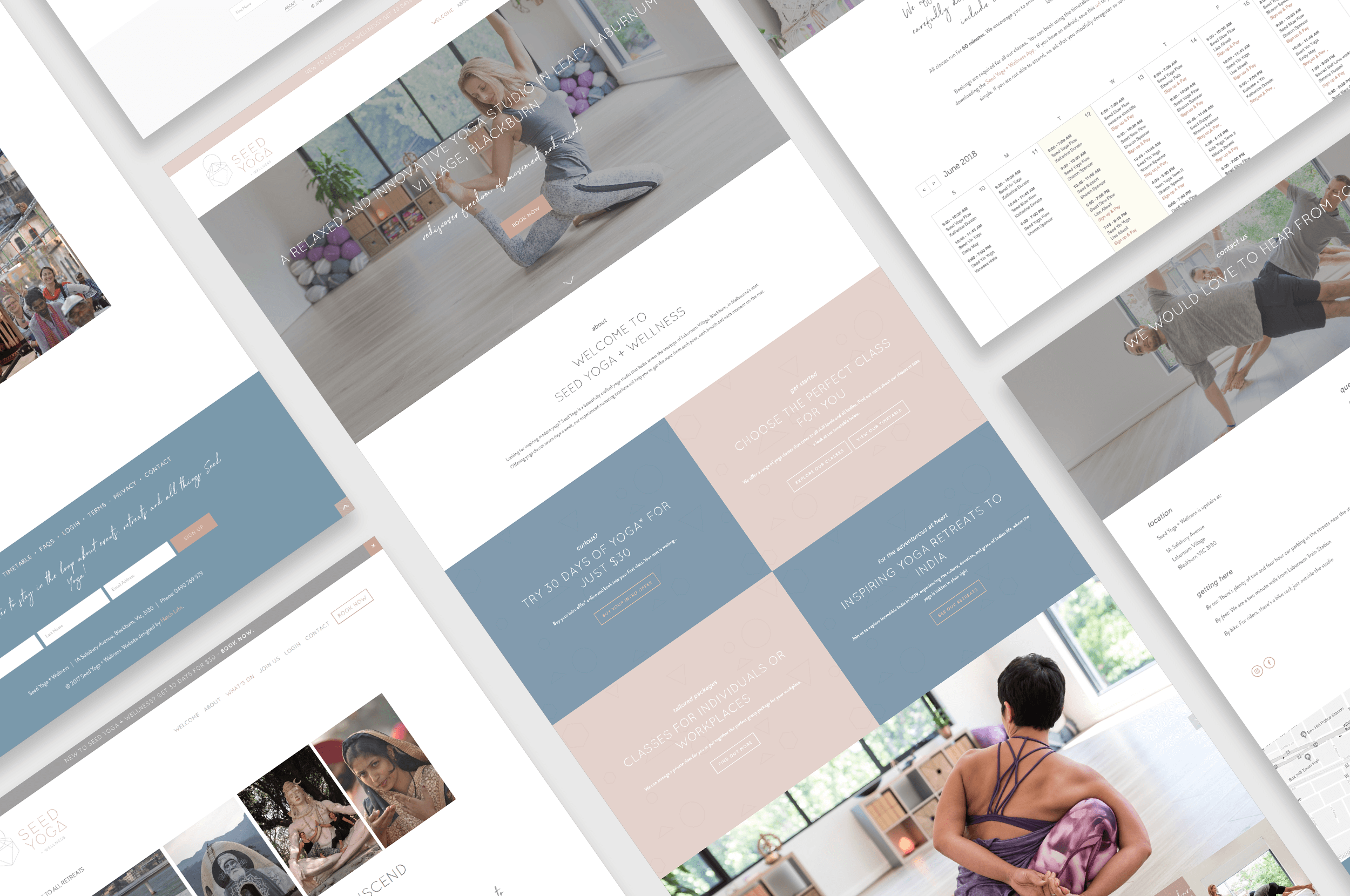 squarespace-website-design-for-small-business-seed-yoga-wellness.png