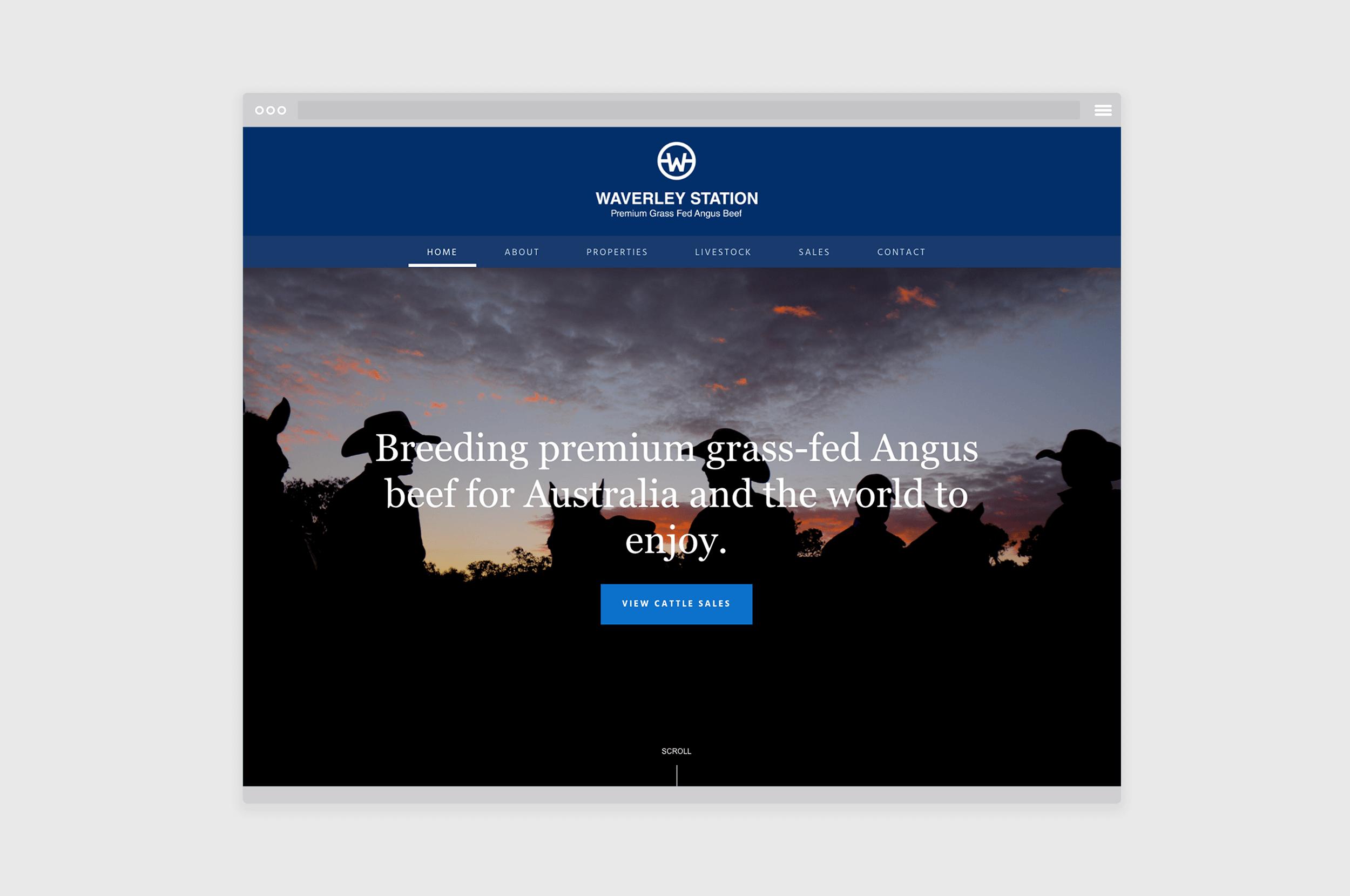 branding-squarespace-web-desgin-melbourne-waverley-station.png