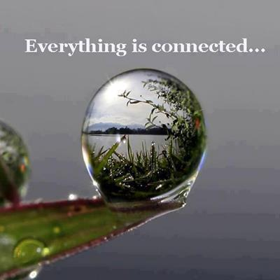 everything-is-connected.jpg