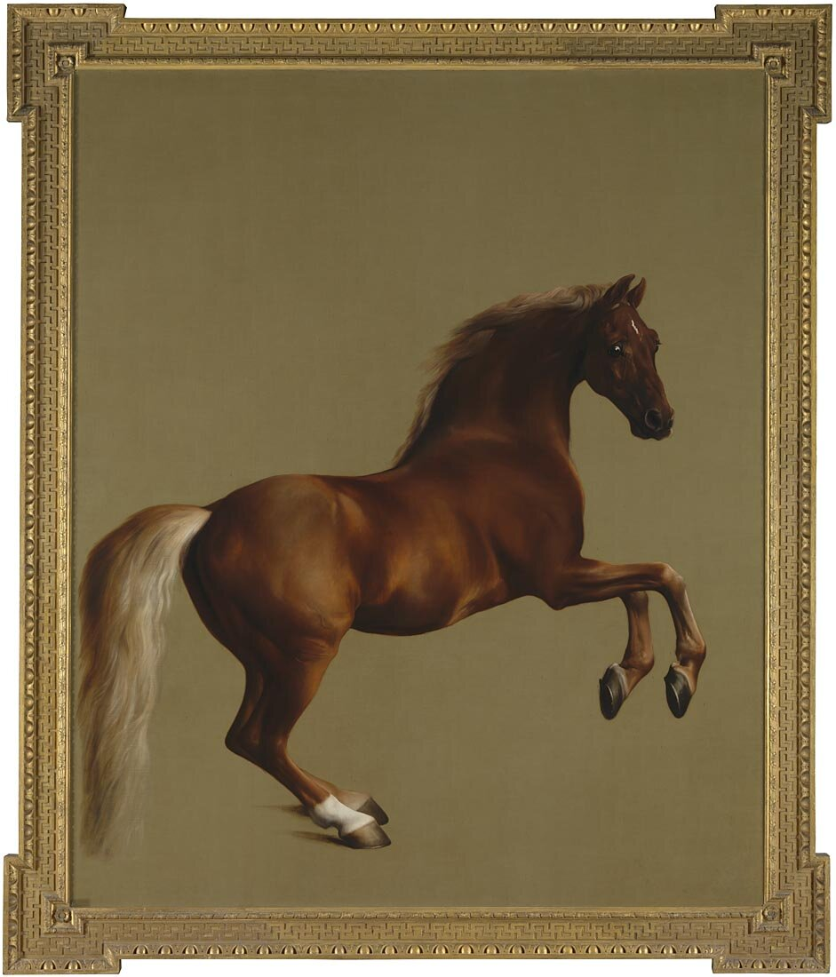 George Stubbs,  Whistlejacket,  1762. Bought with the support of the Heritage Lottery Fund, 1997 © THE NATIONAL GALLERY, LONDON