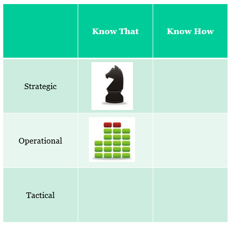 Understanding at the Strategic and Operational Levels