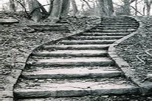 steps 2.jpg