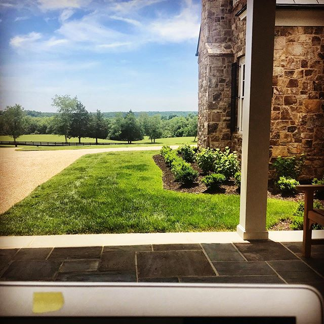 With nine days until deadline for book seven, I wanted the coolest, breeziest spot to work. Today, this is the one! All four dogs asleep in the shade beside me. Wish me luck... #deadline #writerslife #bookstagrammer #stmartinspress #author