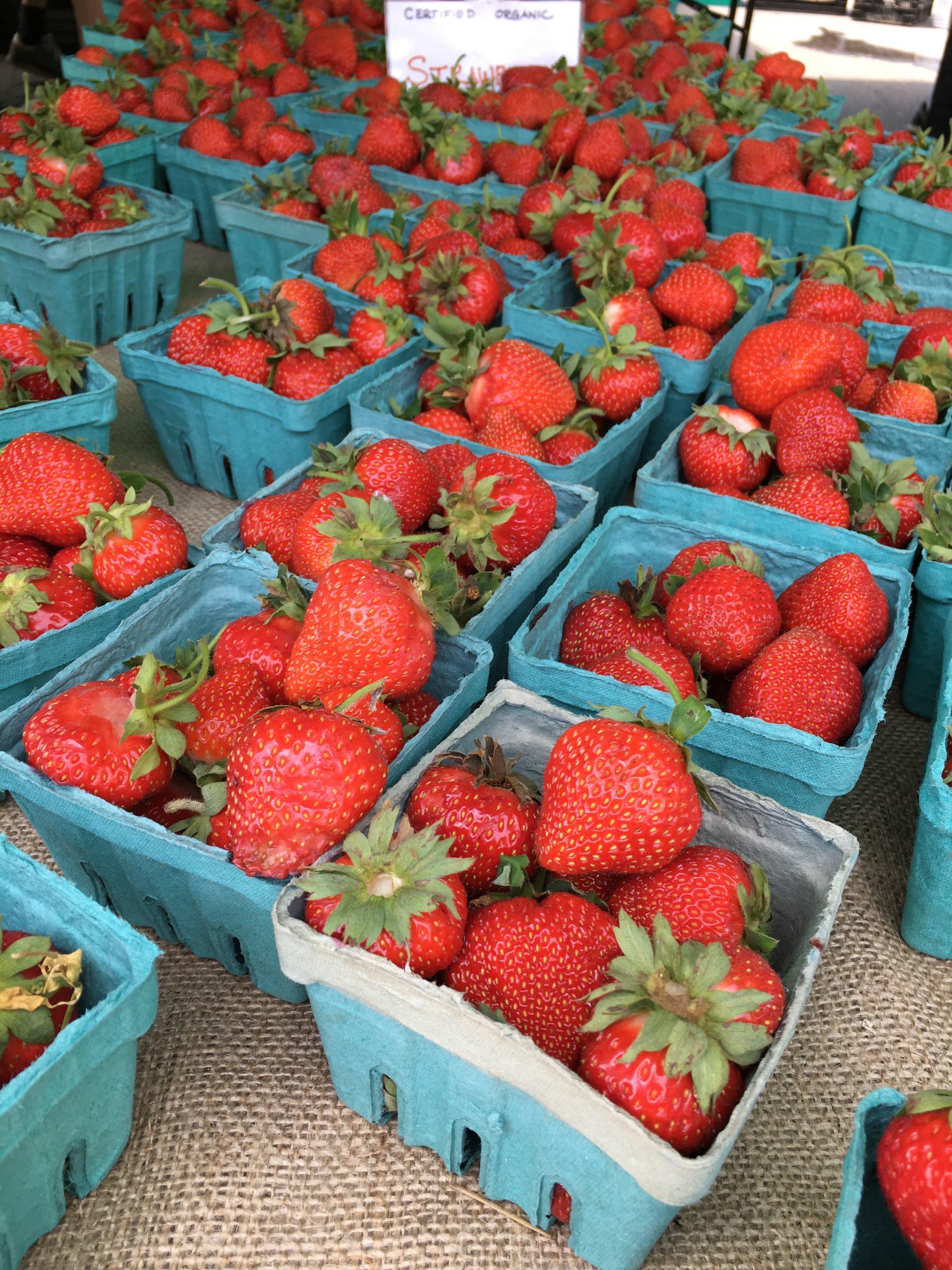Westport Farmers Market Strawberries (Carlyn).jpg