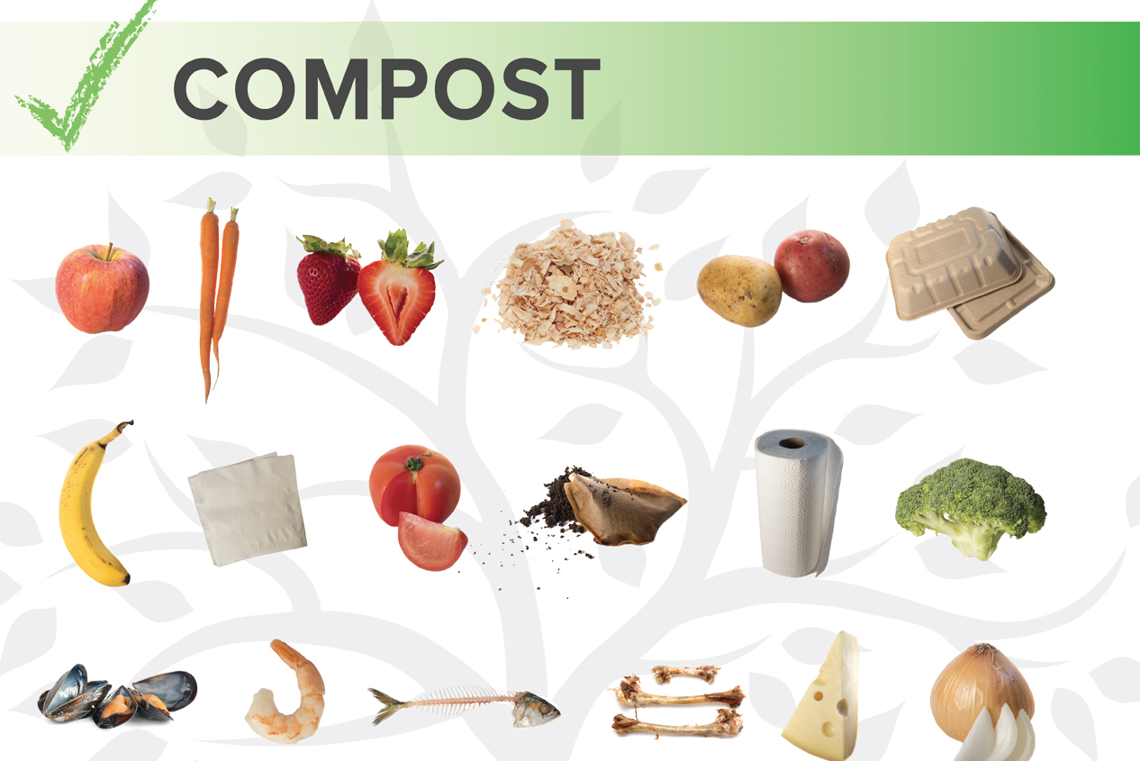 COMPOST SORTING GRAPHIC - POSTER