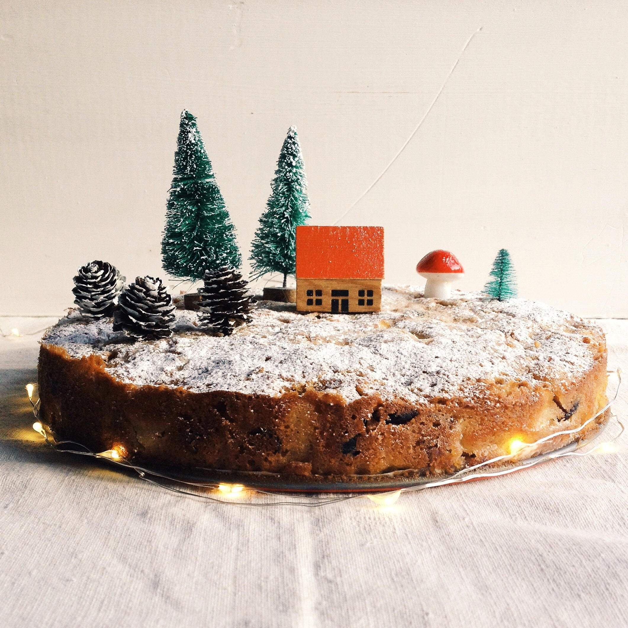 Spiced Apple, Cranberry and Almond Christmas Cake