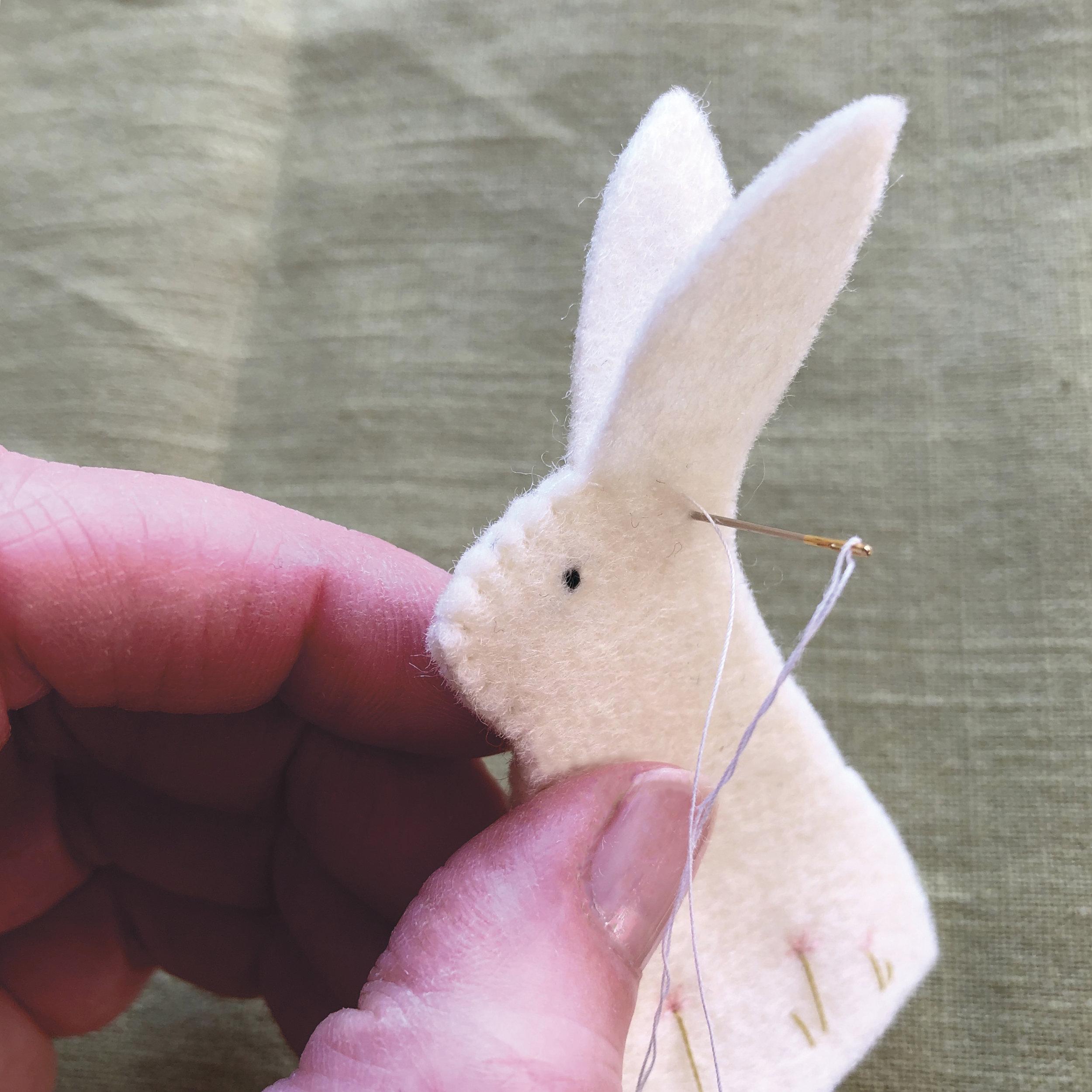 bunny 4 Juno.jpg