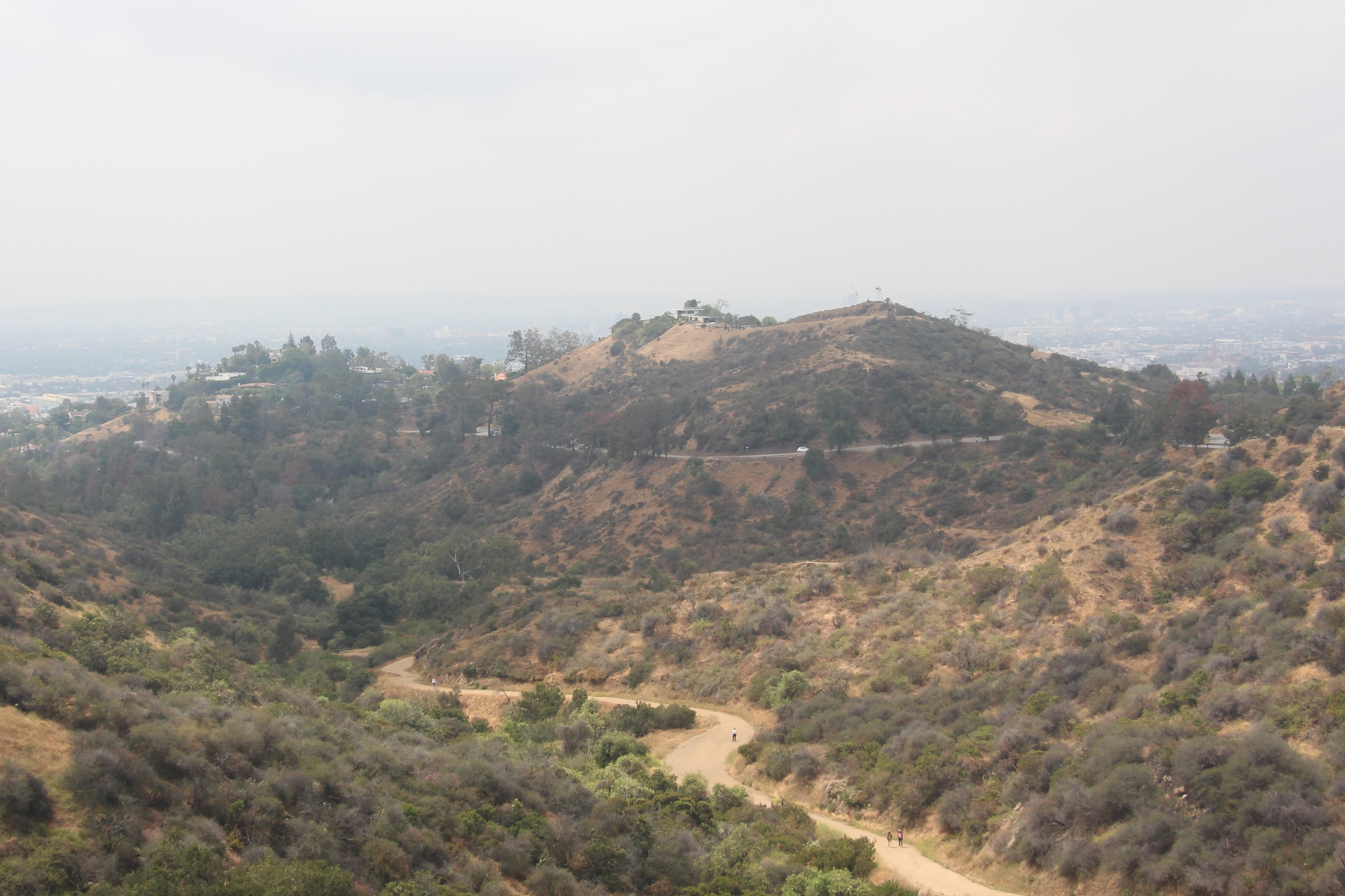 view from hike up to Griffith Observatory by Mindy Larsen