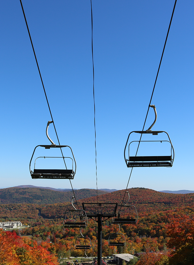 foliage chair lift.jpg