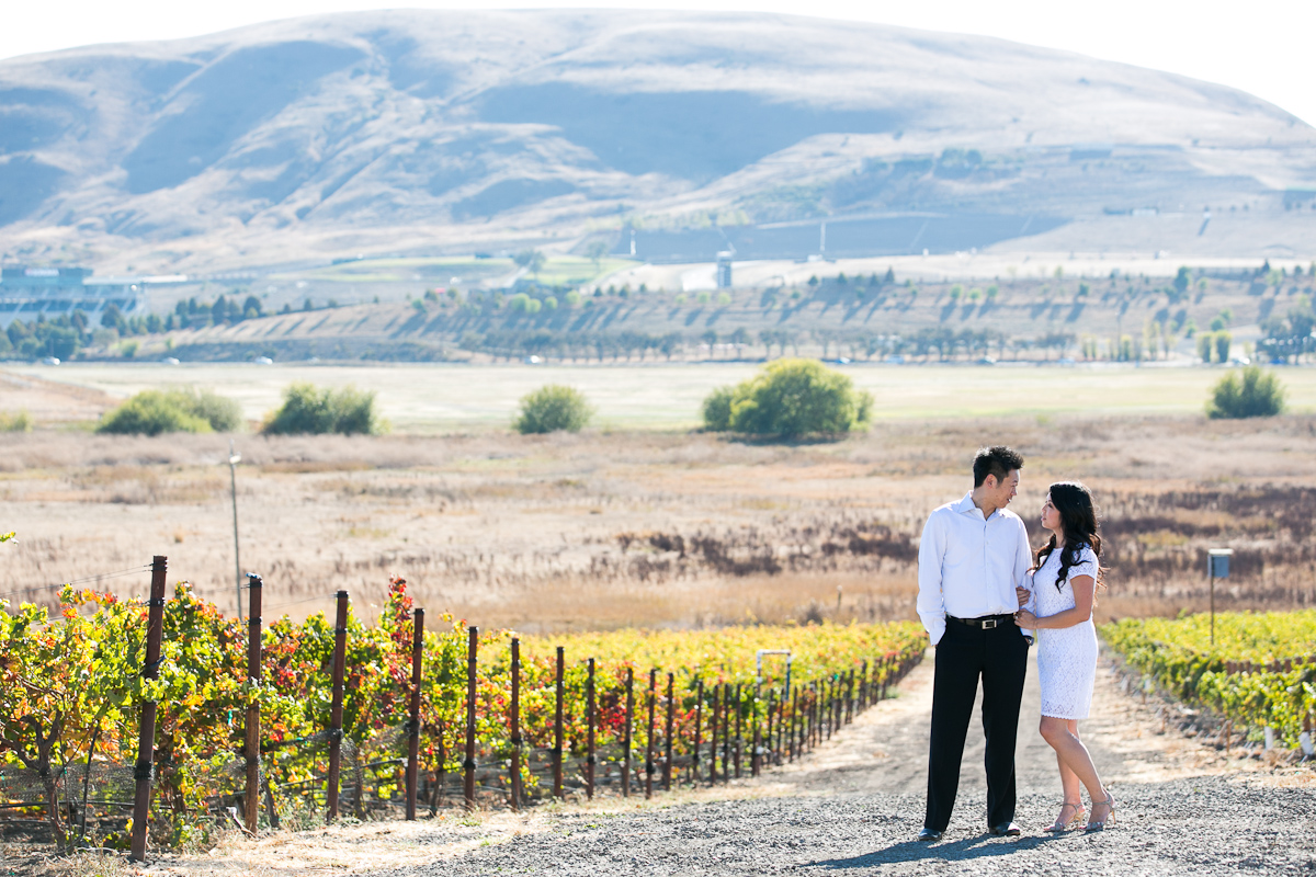 Ronnie-Vic-003-3-winery-engagement-sonoma.jpg