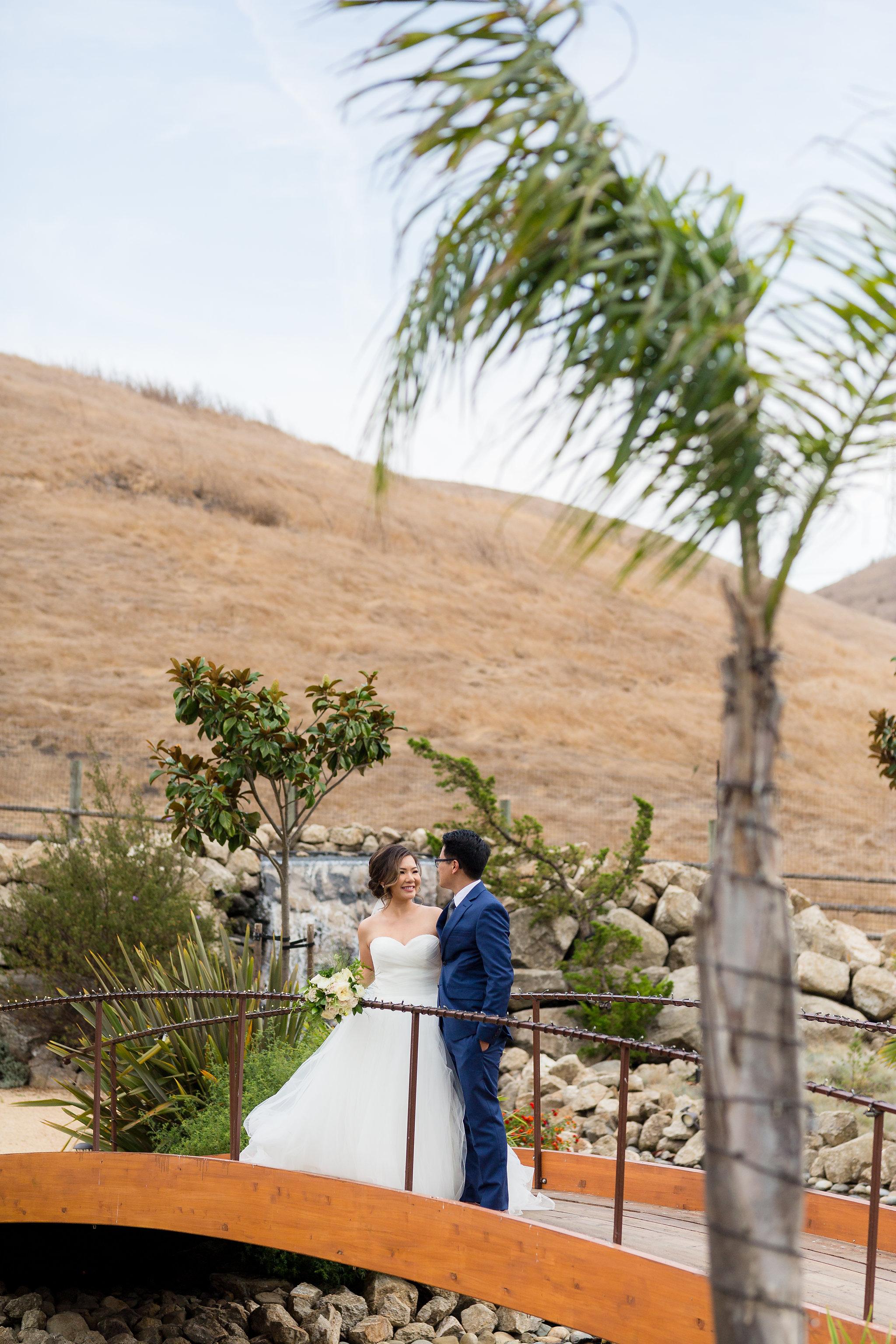 Nella Terra Sunol wedding photography-11.jpg