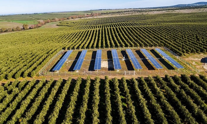 Positive-prospects-for-solar-powered-irrigation-systems.jpeg