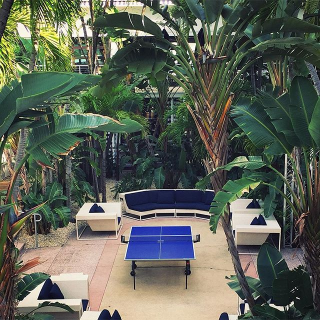 ping pong paradise  #pongroad #pingpong #tabletennis #albionhotel #miami #documentary #webseries #onlocation #newfootage
