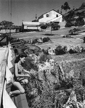 Figure 1  Douglas Aircraft Facility, 1942,Santa Monica, California